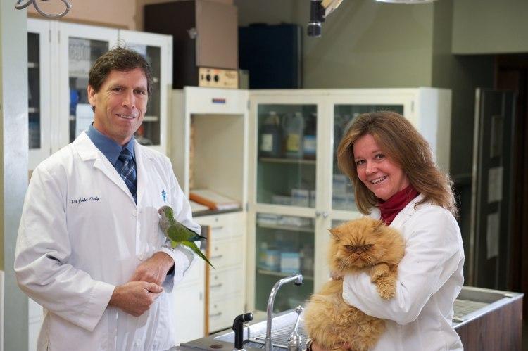 The vets at Valley Veterinary Hospital